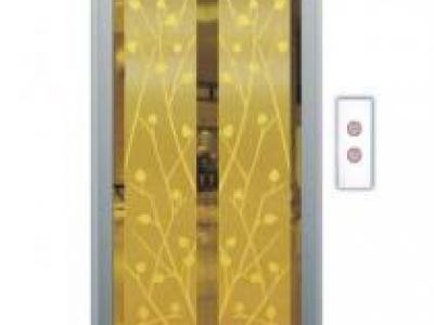Cửa tầng thang máy Phong thuỷ Lựa chọn SVELD07